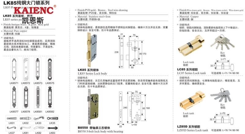 鎖芯 純銅鎖芯 不銹鋼鎖芯 電腦匙 鎖芯廠家