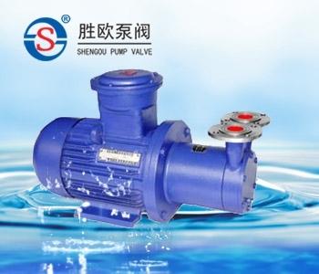 CW型磁力旋渦泵