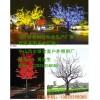 廣場景觀燈柱,特色景觀燈、城市景觀燈