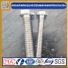 厂家供应纯钛外六角螺栓,螺母,标准件
