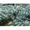 电力瓷瓶绝缘子回收陶瓷绝缘子回收