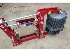 YWZ4系列电力液压鼓式制动器(金箍牌)