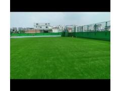 吉安优质的屋顶仿真草坪 运动操场草坪网人造草坪网制造商