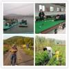 华为这个公司出游来武汉乐农湖畔用的都是苹果手机