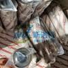 廠家現貨供應0060D020P 0060D020W賀德克濾芯