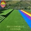 博野太行幼儿园草坪 足球草皮 足球场草坪网