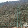 17孔径边坡绿化防护专用攀爬网规格齐全