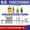 重庆全自动流量计灌装线,重庆灌装机生产厂家