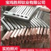 廠家生產鈦銅復合棒 耐腐蝕鈦陽極棒 加工定做鈦包銅