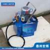 泰州世博3DSB系列手提式電動試壓泵