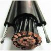 葫芦电缆RVV1G/RVV2G电动葫芦电缆