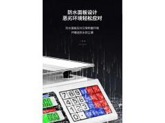 南宁北湖菜市场商用电子秤菜市场专用秤