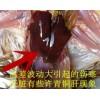 陽光禽業技術咨詢(初產雞呼吸道病的疫病分享)