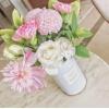 花加——自來水、雨水和純凈水,給花澆水哪種好?
