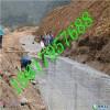 大型鍍鋅格賓網供應、鉛絲石籠實體廠家